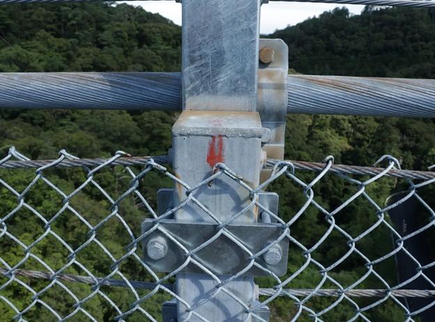 浜北森林公園吊橋中央付近