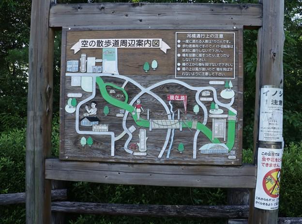 浜北森林公園吊橋(空の散歩道)周辺案内図