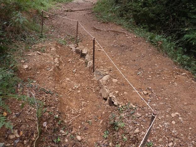 昨日(K)さんが直した登山道