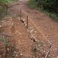 Photos: 昨日(K)さんが直した登山道