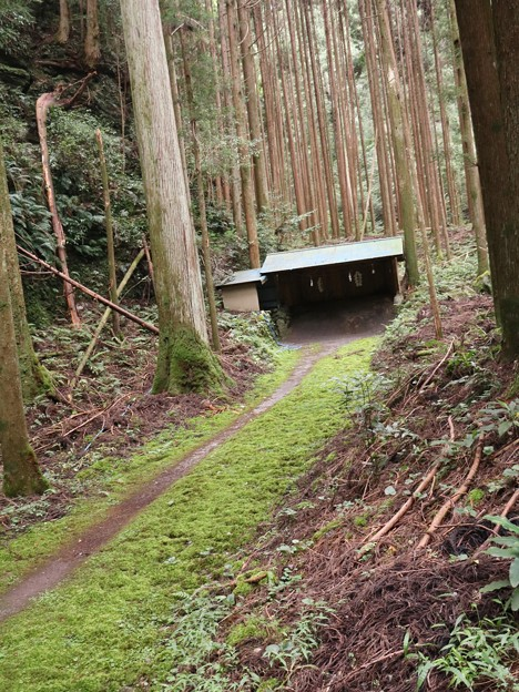 浜松市天竜区横山町安蔵の百合若神社矢場