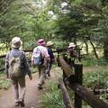 Photos: 森林公園旧山友その仲間