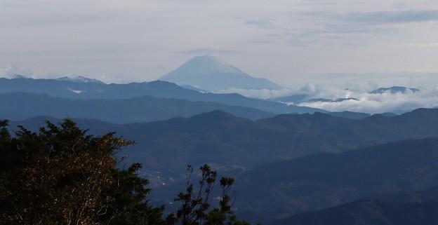 富幕山休憩舎展望デッキから今朝のうっすら冠雪の富士山
