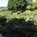 光岩山この寺の庭園は「満天星(どうだん)の庭」として有名で、北方の山波が借景として生かされ、その山中に方形のいらかを見せて本堂が納まっている。庭一面にドウダンツツジが植えられ、春は花、秋の紅葉、冬は枯