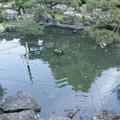 光岩山長楽寺庭園