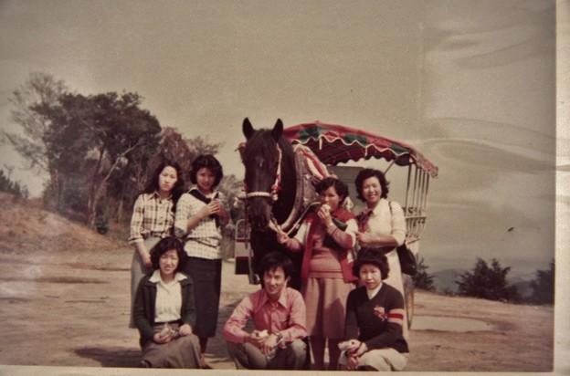 昔写真、奥山高原前駐車場観覧幌馬車と