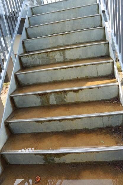 富幕山休憩舎デッキに登る階段に水が溜り冬は氷って危険です。