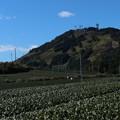 茶文字の粟ヶ岳