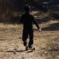 昔ライダーHKさんへ富幕山ハクビシン散歩はリードなしでこんな感じです。。。