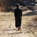 Photos: 富幕山散歩中のハクビシン(白鼻芯) ジャコウネコ科