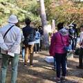 Photos: 森林公園自然生き物探検隊