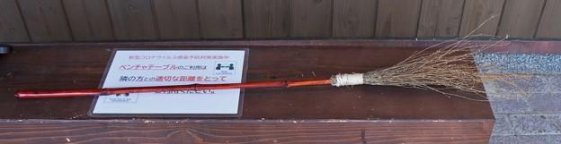 森林公園自然生き物探検隊 コウヤボウキ(高野箒) キク科から作った(F)さん作の箒
