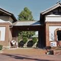 旧赤松家記念館写真展中央のナギ(梛) マキ科