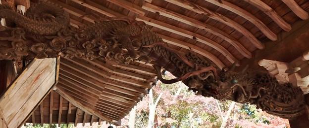 平口不動寺この竜は昇り竜か降り竜どちらでしょうか~?