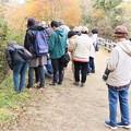 森林公園自然観察会