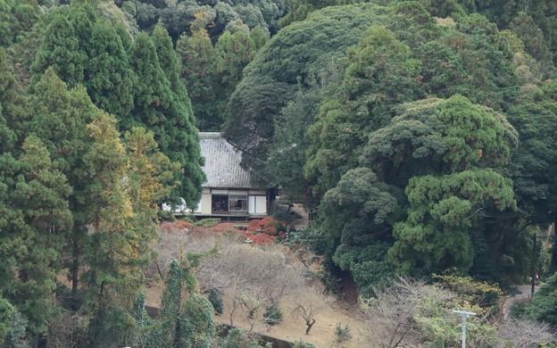 山号となった光岩から長楽寺