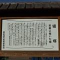 Photos: 猫塚