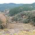 Photos: 引佐湖