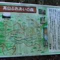 Photos: 高山ふれあいの森