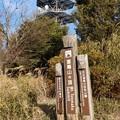 Photos: 富幕山標高563,2m