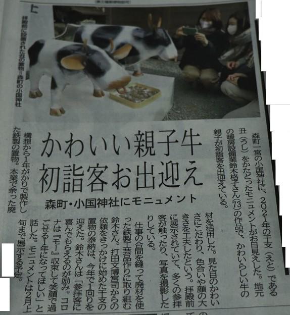 今朝の新聞に鉄の干支(えと)の丑(うし)親子が小国神社で初詣客をお出迎え・・鈴木格子(けいこ)さん作品は拝殿前に展示