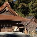 Photos: 小国神社