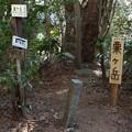 Photos: 粟ヶ岳山頂
