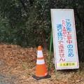 Photos: 林道奥山陣座コース工事中