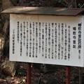 Photos: 幡教寺