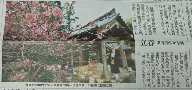 地元新聞令和3年2月3日夕刊に長楽寺のヤエカンコウバイ(八重寒紅梅)バラ科