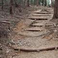 富幕山登山道らくらくコース(K)さんが整備した所