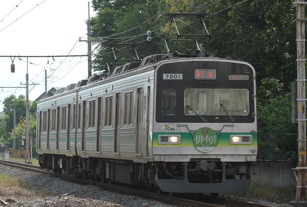 7801F