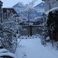 雪景色_守谷 D6375