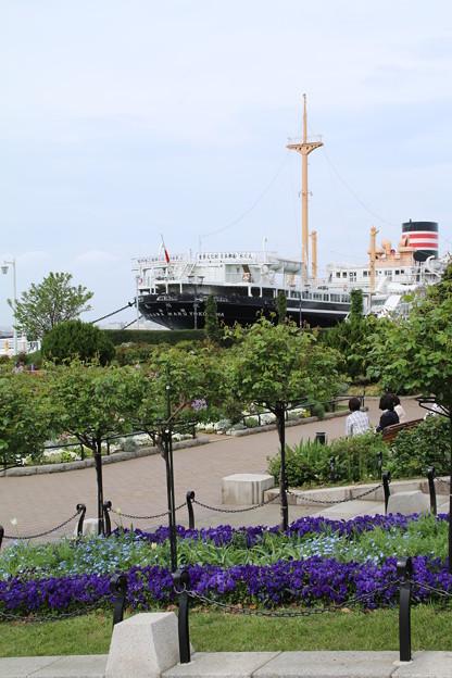 山下公園_横浜 D7187