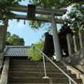 写真: 加茂神社_米原 F2780