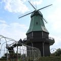 風車_公園 D8284