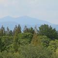 風景_公園 D8297
