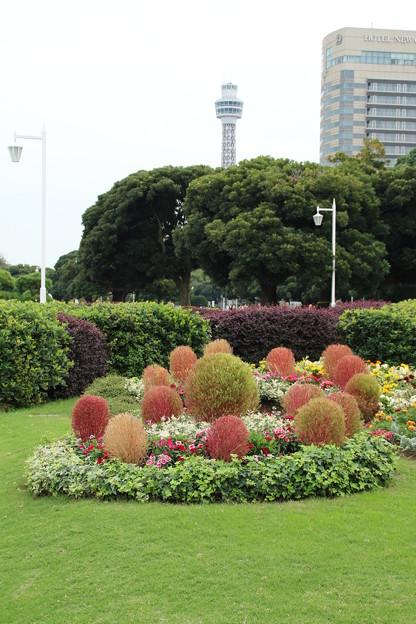 花壇_横浜 D8641