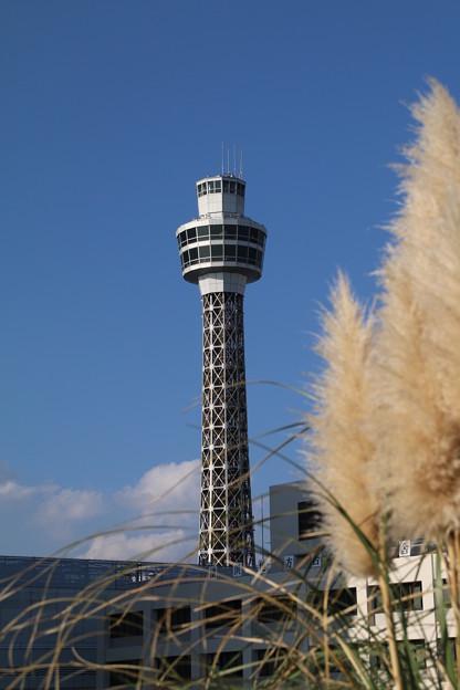 マリンタワー_横浜 D8915