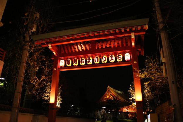 夜景_浅草 D9359
