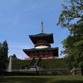 Photos: 新勝寺_成田 D1283
