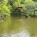 Photos: 池_新勝寺 D1293