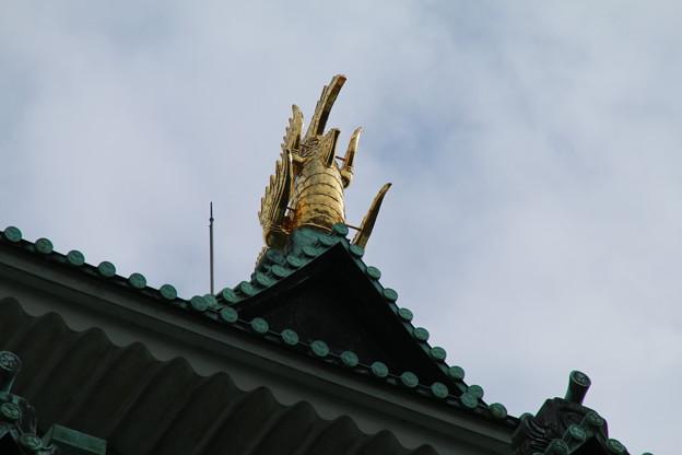 金の鯱_名古屋城 D2303