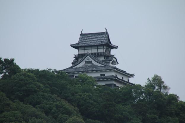 犬山城_愛知 D2391