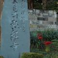 弘経寺 D3273