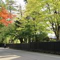 Photos: 武家屋敷通り_角館 D3403