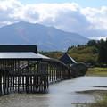 Photos: 鶴の舞橋と_青森 D3553