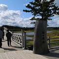Photos: 鶴の舞橋_青森 D3560