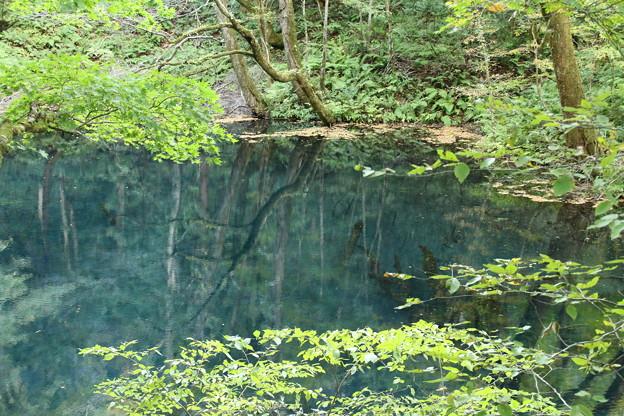 沸壷の池_青森 D3600