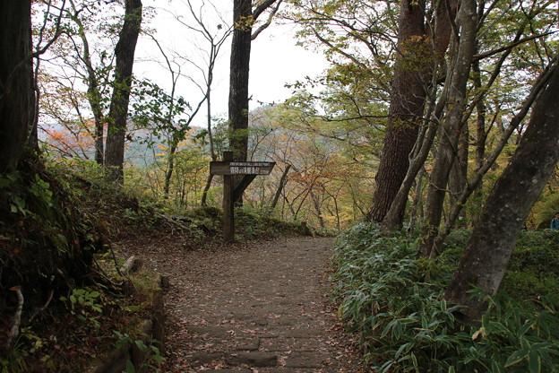 霧降の滝へ_日光 D4054